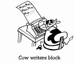Vaquita escribiendo su blog